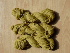 wool dyed with nettles 300x225 Time to Harvest Nettles!
