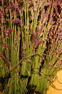 Bunched lavender tied tightly with string.