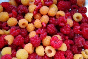 Berries ready for mashing.