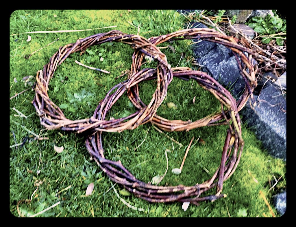 Here are three finished wreath.  You can use these as is or as a base for baskets.