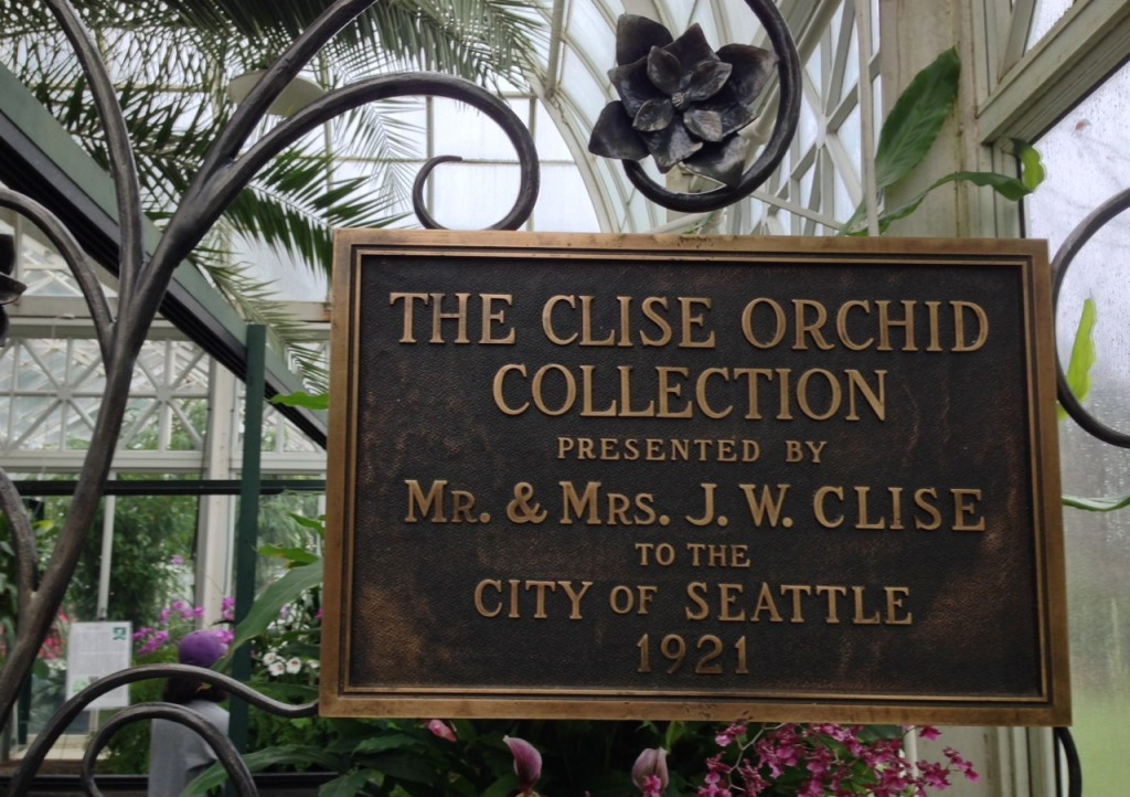 The orchid collection and stories about famous collectors are wonderful.