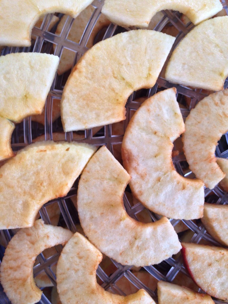 Lay the slices out on your dehydrator racks and fire them up.