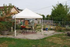 DSC 5389 300x200 Community Builder Jessica Breznau