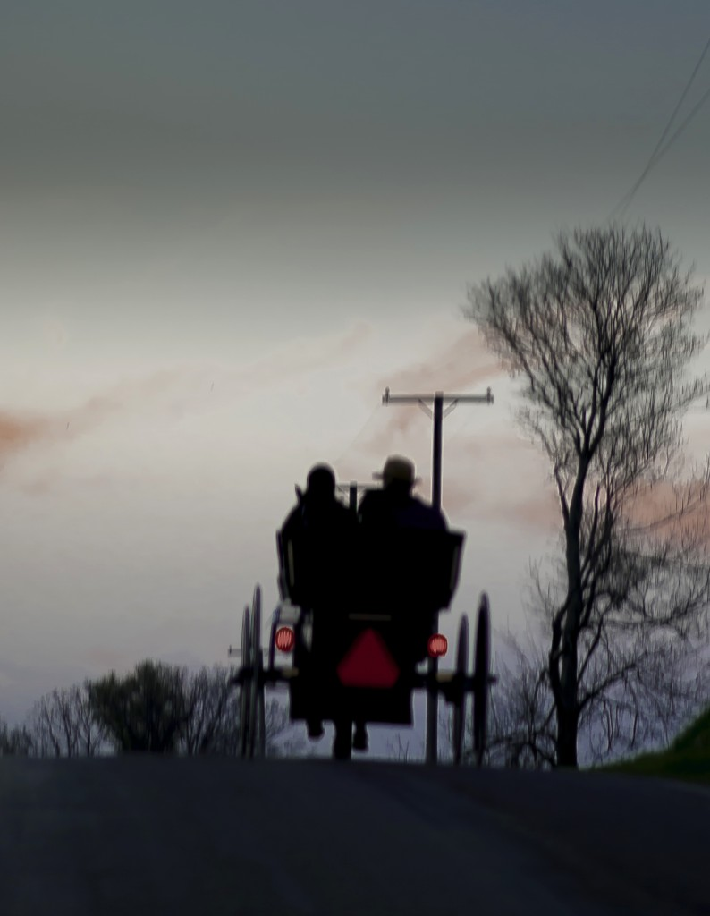 A buggy heading home.