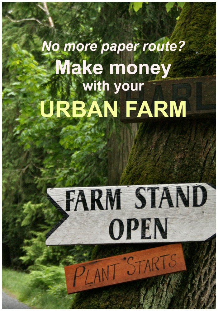 Urban Farm Sign